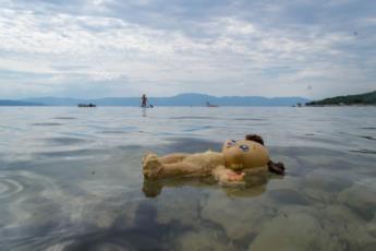 3. Njivice Krk Der kleine Bär schwimmt nass im Meer