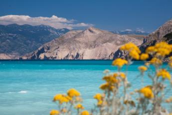 5. Blumen Farbtupfer am Strand in Baska auf der Insel Krk