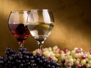 Hrvatska raj za ljubitelje vina Foto